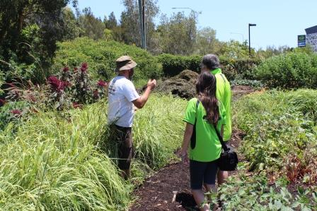 Gold Coast Permaculture